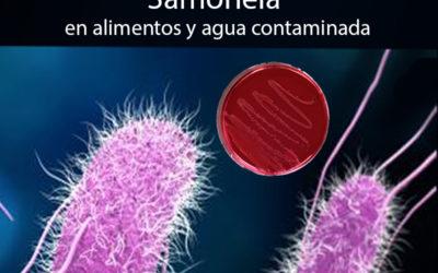 Salmonelosis infección gastrointestinal común en el verano